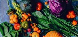 Desperdicio de alimentos: un problema de todos
