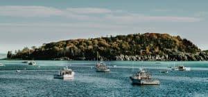 ¿Quién regula el proceso de la pesca?